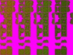 TileSet  Arbres/Trees